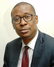 MINISTER for Industry, Trade and Investment, Dr Okechukwu Enelamah