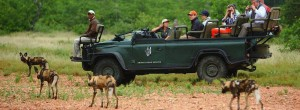 SA turns to tourism to resuscitate economy