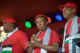 EFF CIC Julius Malema and party leadership
