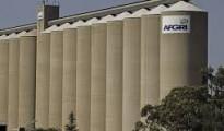 Maize silos